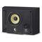 wall-mounted speaker