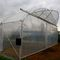 commercial greenhouse / steel frame