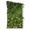 moss living frame
