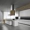 contemporary kitchen / stainless steel / handleless