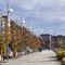 urban lamppost / design / cast aluminum / galvanized steel