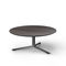 contemporary coffee table / wooden / marble / clay