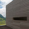 concrete cladding / painted / strip / wood look