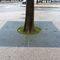 square tree grate / round / galvanized steelANDAINENORCOR MOB.URBAIN