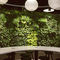 vertical garden with live plants
