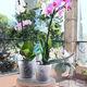 polypropylene flower pot / round / home