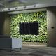 preserved green wall / natural / foliage / indoor