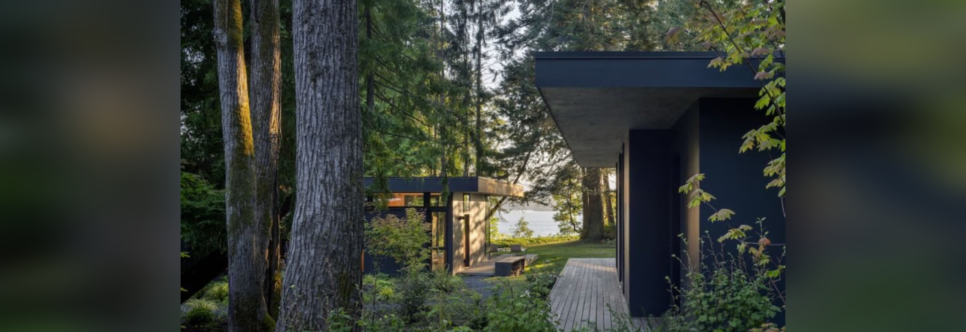 A cluster of coast forest cabins brings a nature-loving family closer together