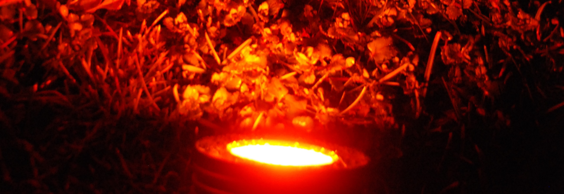 Flood LED Light SOLEA