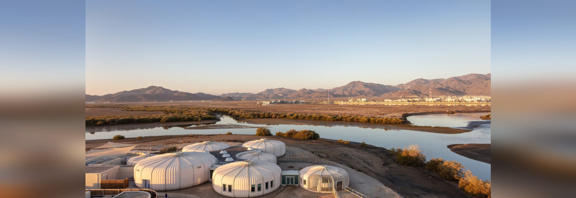 Hopkins Architects completes turtle and wildlife sanctuary in the UAE