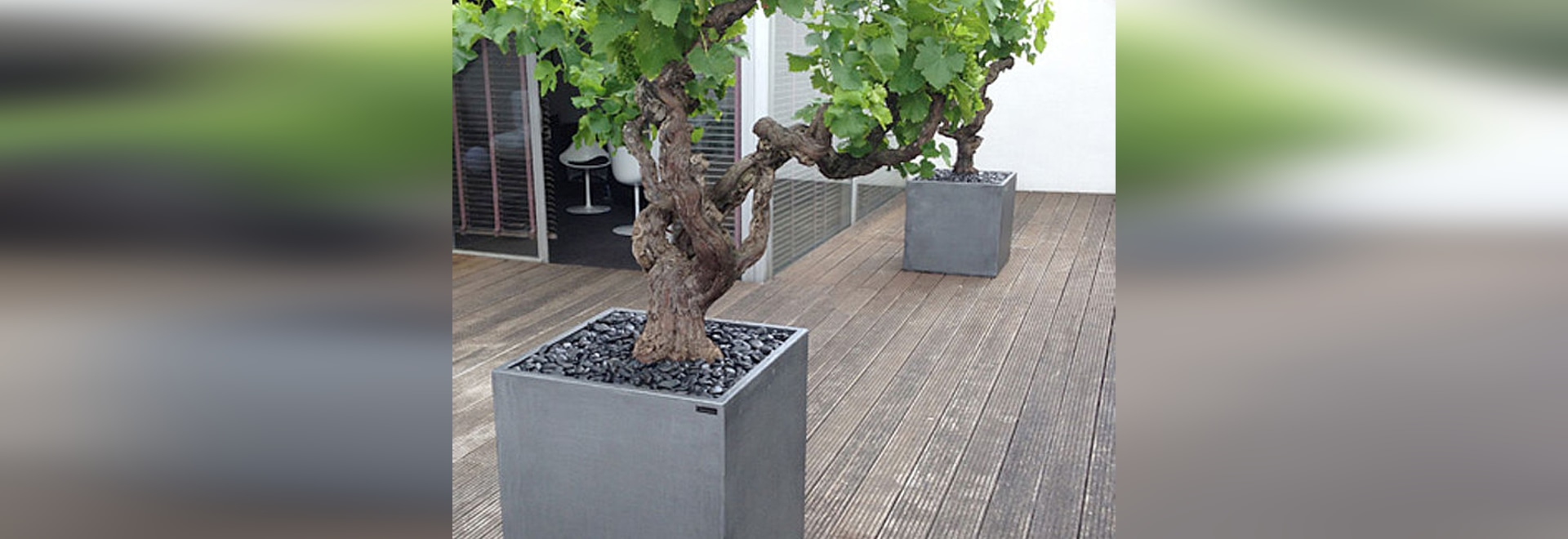 Image''In cubic planters with a patina of zinc imitation !