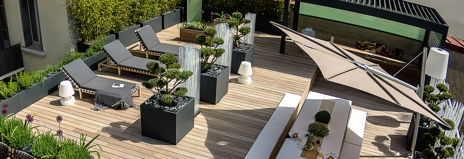 Image'In planters on rooftop