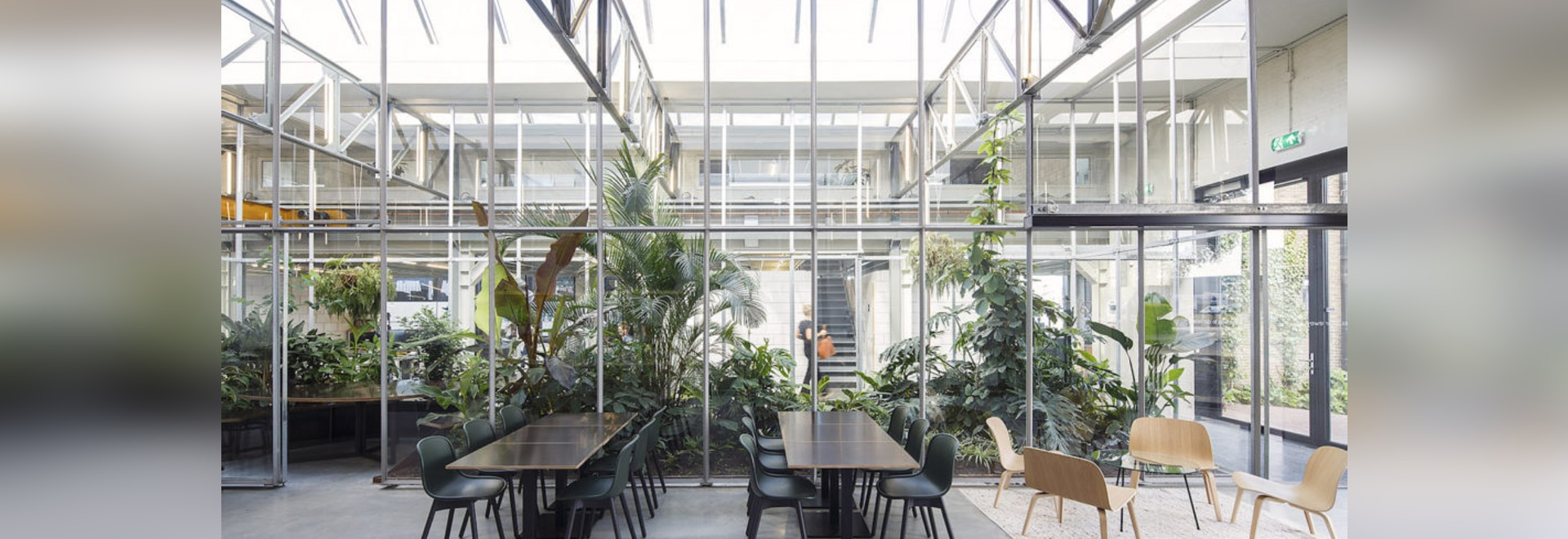 Nature-filled office takes over a former factory building in Amsterdam-Noord