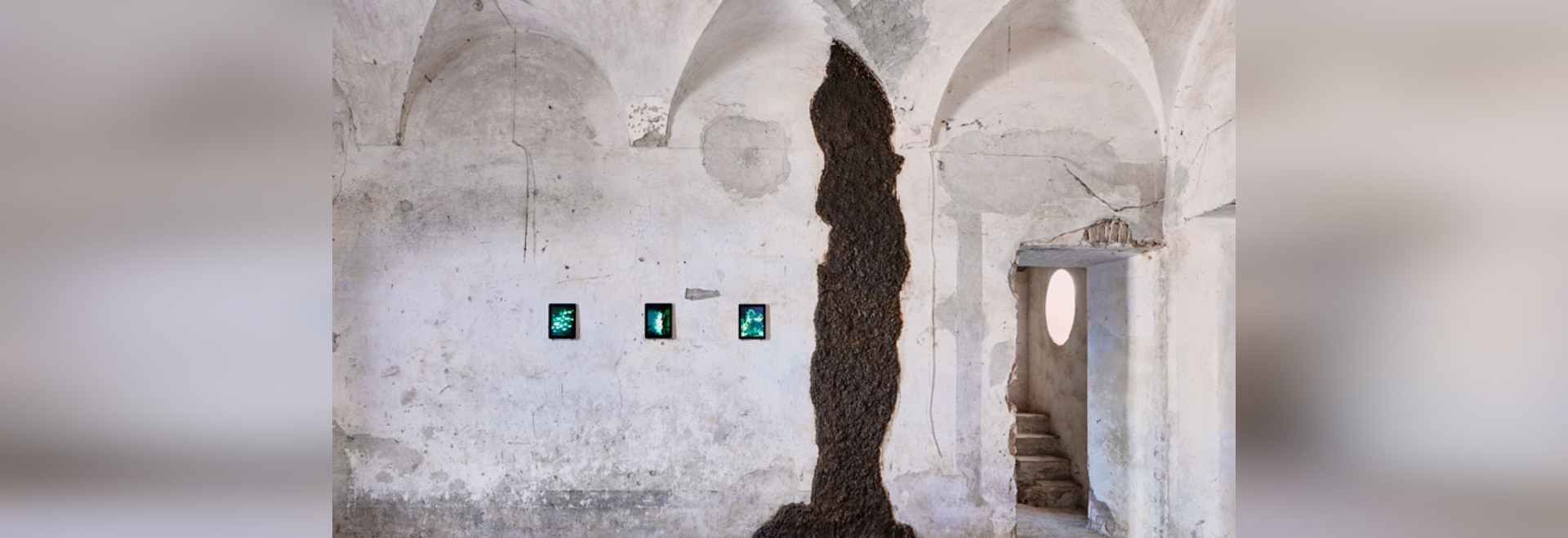 The shit museum in piacenza documents the history of feces