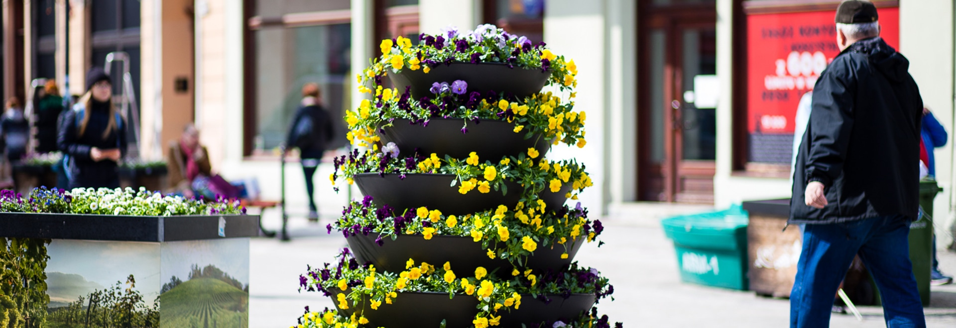 Spring Planting in the Flower Containers
