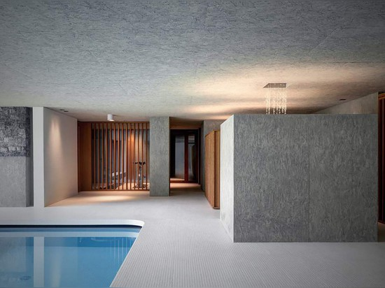 ACT_ROMEGIALLI DISGUISES INDOOR POOL WITH A GREEN ROOF