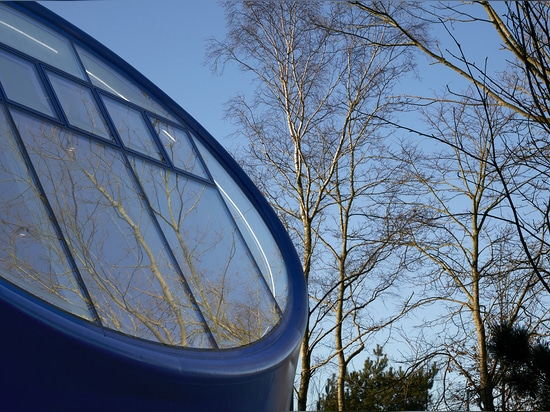 Light was one of the key considerations when designing the organic-shaped, low, blue structure