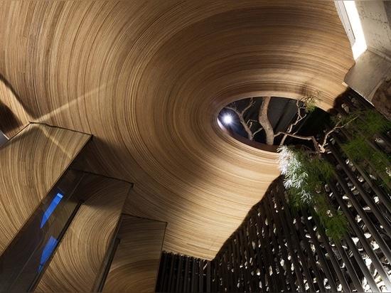 tree ring ceiling detail