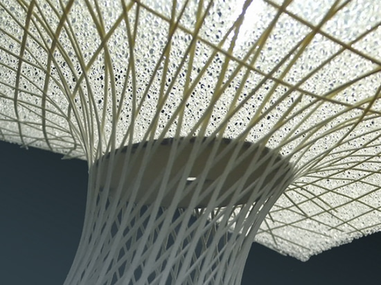 Rethinking Bamboo as a Construction Material