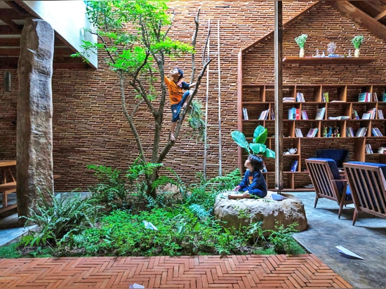 Incredible daylit house in Vietnam is filled with living trees