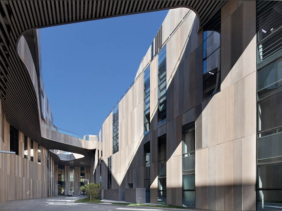 the voids cut through the building allowing light into the public zones
