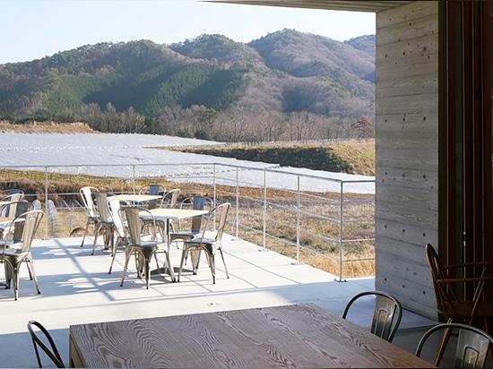 masamichi katayama / wonderwall embeds concrete winery into hillside in japan