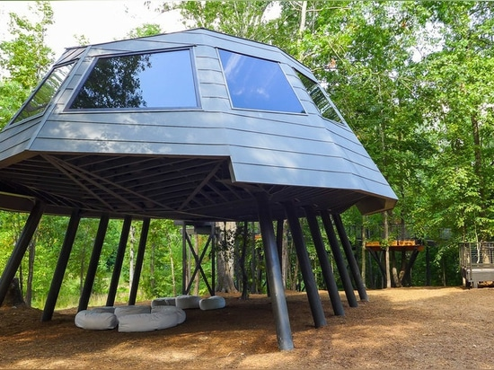 A treehouse unlike any other