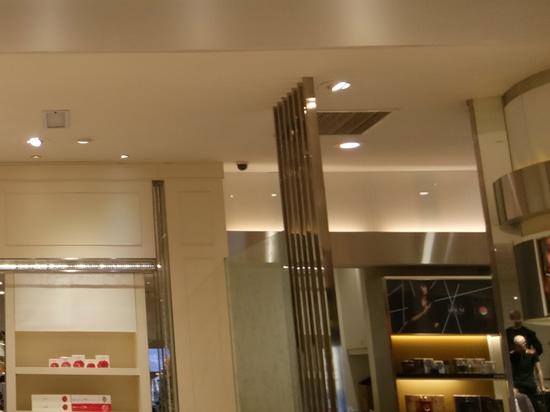 Beam Angle adjustable Ceiling Light