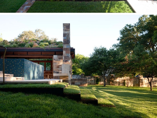 This Poolhouse In Texas Is Covered With A Lush Green Roof