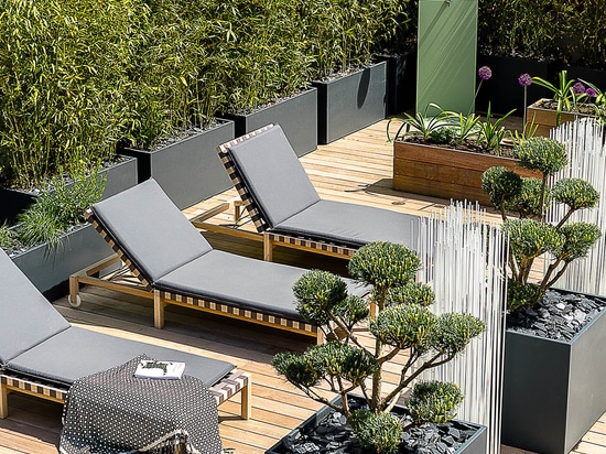 A bamboo hedge on IMAGE'IN planters