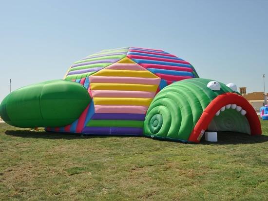 Turtle Dome