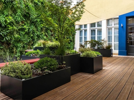 Vegetable composition for prestige Hotel with the IMAGE'IN made-to-measure planters