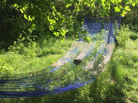 The ethereal hammocks of Sarah Sze in the Arsenale gardens.