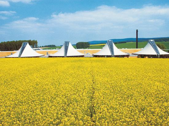 The four production pavilions were completed in 1987 to house Wilkhahn's sewing and upholstery shops. Their sweeping curved tepee-like forms sit comfortably in the landscape.