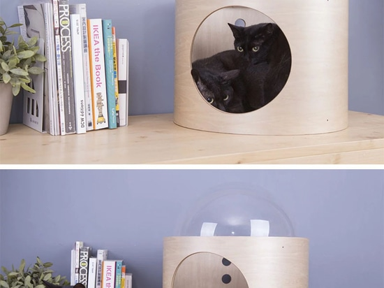 Spaceship Inspired Cat Beds Are A Thing Now