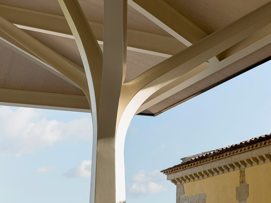 the canopy is supported by tree-shaped load bearing columns