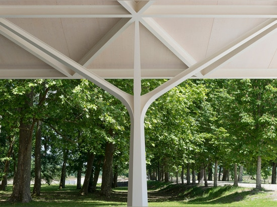 the shape of the columns is a clear reference to the building's rural surroundings