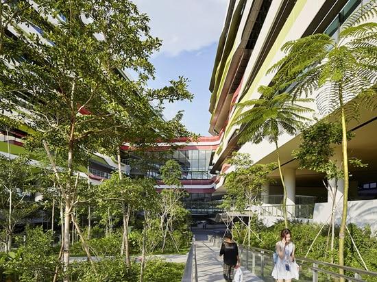 natural vegetation permeates the campus
