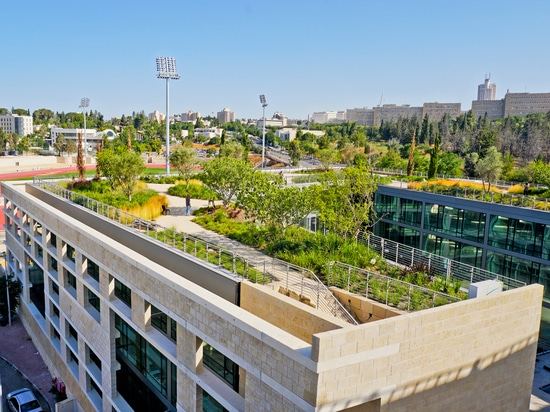 """Garden on the rooftop of """"The National Campus for the Archaeology of Israel"""""""