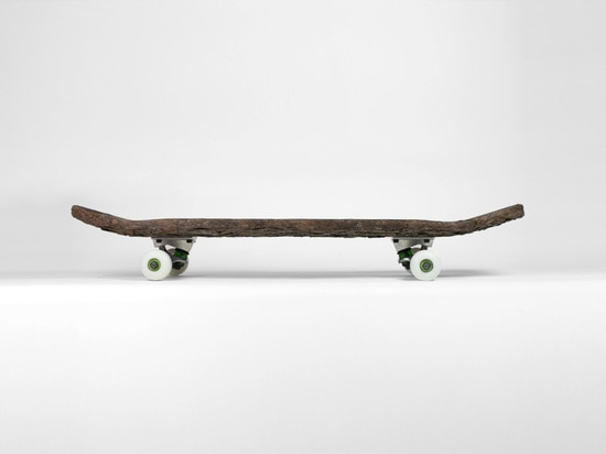 NATURAL SKATEBOARDING BY CHRISTOPHE GUINET