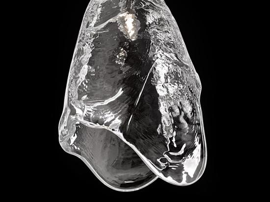 Frozen by Maxim Velčovský