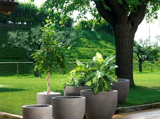 The terrace – a place for plants?