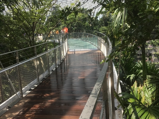 Walkway in Jewel Changi Airport