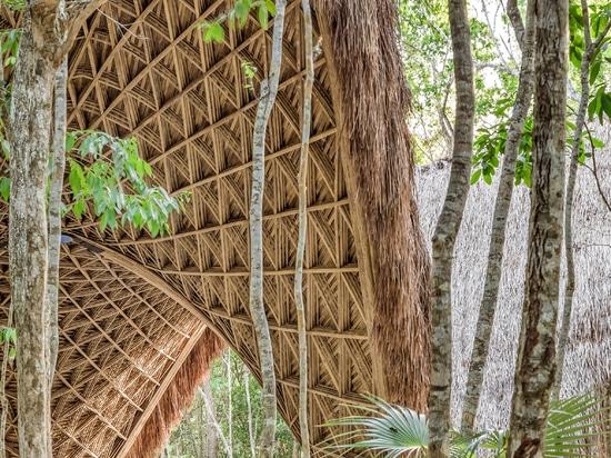 CO-LAB Design Office creates bamboo yoga pavilion in Tulum