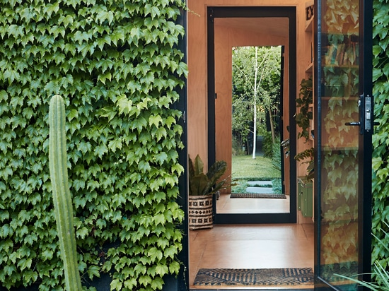 Writer's Shed is a tiny garden studio in Melbourne covered in ivy