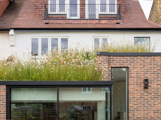 Fraher & Findlay adds wildflower-topped extension to London house
