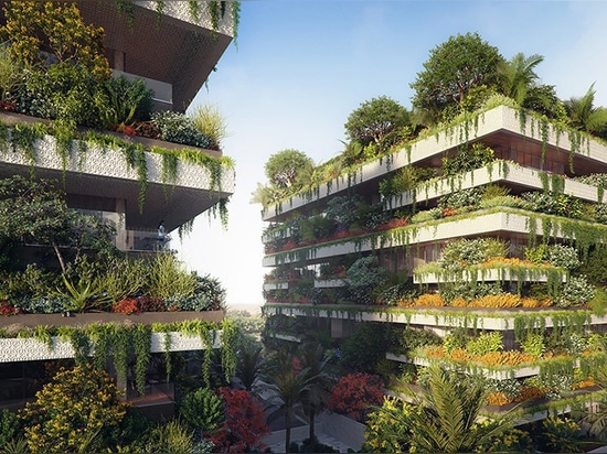stefano boeri plans three 'green cubes' for egypt that will form africa's first vertical forest