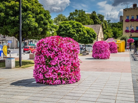 flower towers for public spaces - terra group