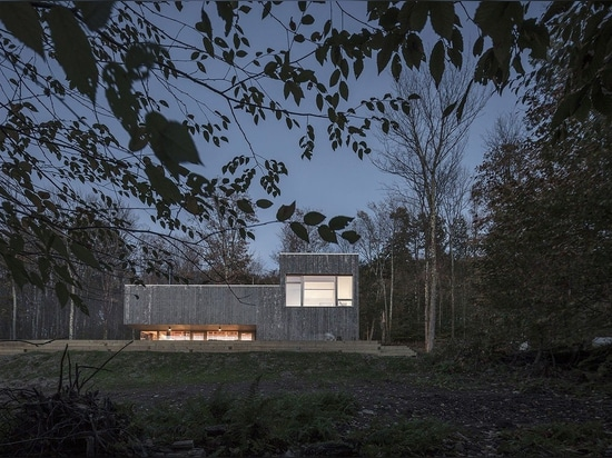 Life in the woods: concrete and wood house in New York state