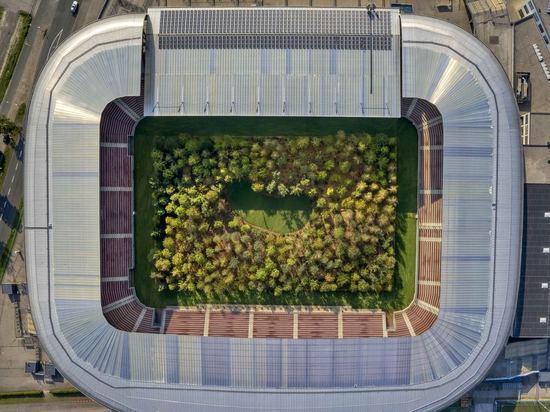 Austrian Stadium is Transformed into Giant Forest